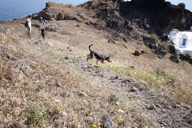 Walking tour in Santorini with Arsenio and Juliana from Santorini by Foot